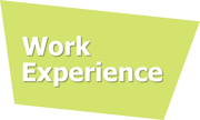 Work experience logo