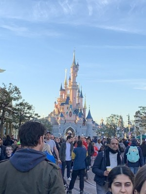 Disneyland 2019 7