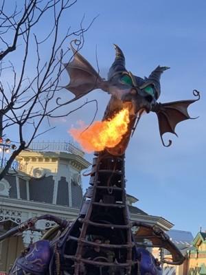 Disneyland 2019 24